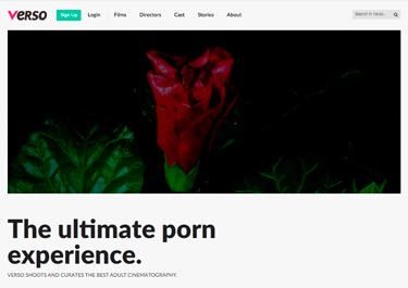 My favorite paid porn site to watch adult flicks for women